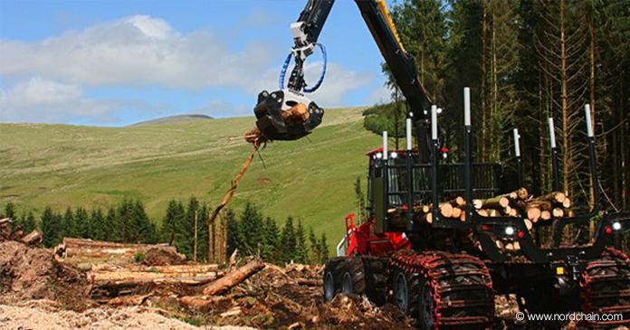 Forstmaschine bearbeitet Baumstämme